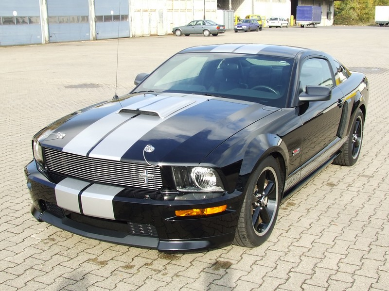 2007 ford mustang shelby gt pictures to pin on pinterest. Black Bedroom Furniture Sets. Home Design Ideas